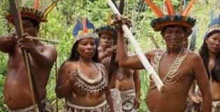 indigenismo2